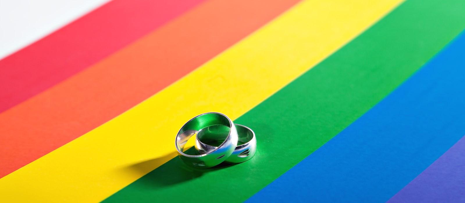 Bīskaps vēlas redzēt homoseksuālos pārus Katoļu baznīcas Pasaules ģimeņu saietā 2018. gadā Īrijā